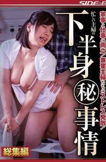 NSPS-773 Balancing Work With Housework!Stress Dissipation Of Conglomerate Housewives! Lower Half Of Busy Housewife's Secret Circumstances