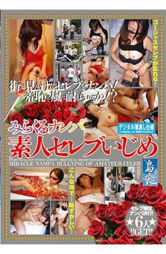 HSM-002 Bullying Celebrity Amateur Nampa Miracle