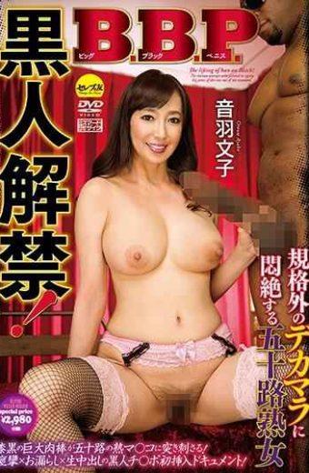 CESD-760 Black Ban BBP Fifty Mature Woman Otowa Fumiko Who Fades Into A Big Black Penis Non-standard Dick