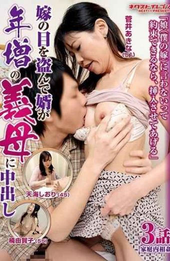 VNDS-3310 If You Can Promise Not To Say To The Daughter my Daughter-in-law Let Me Insert