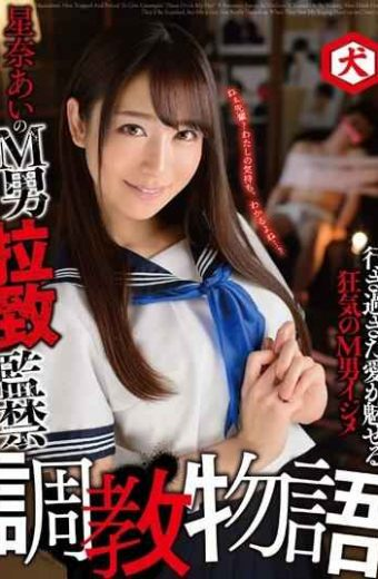 DNJR-007 Hina Sina M Man Abduction Confinement Torture Story