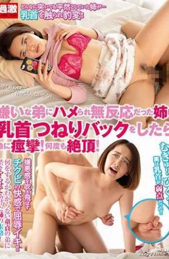 NHDTB-299 I Convulsions Suddenly When I Nipple Turn Back To The Elder Sister Who Is Addicted To The Disliked Brother And Is Unresponsive!Cum Many Times!