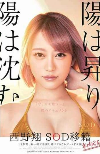 """STARS-113 The Sun Rises And The Sun Sinks Sho Sho Nishino Resigned Within The Year Retirement Within The Year 15 Years Legendary Actress Who Has Been Active On The Front Line """"What Do You Think Now …"""" Naked Document"""
