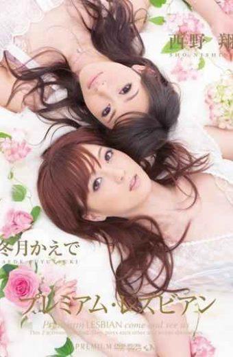 PGD-416 Shou Nishino And Lesbian Premium Maple Winter Months