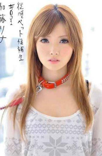 INU-003 Rina Kato # 001 Candidates Pet Obedience