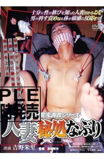 SRD-048 Secret Housewife Series Violet Light Treatment Torment Torture Shima