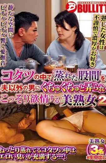EQ-480 Beautiful Mature Woman 2 Secretly Lusted With A Man Other Than Her Husband Crotch Crotch In Kotatsu
