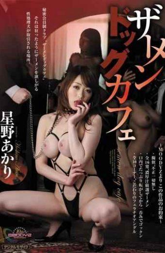 MIGD-397 Akari Hoshino Dog Cafe Cum