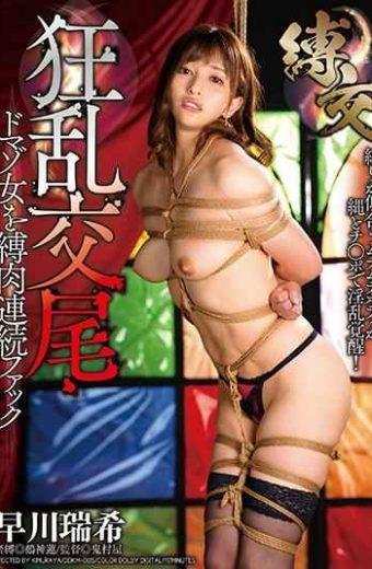 DDKM-005 Bondage Fuck Frenzy Mating Domaso Woman Tied Meat Continuous Fuck Mizuki Hayakawa