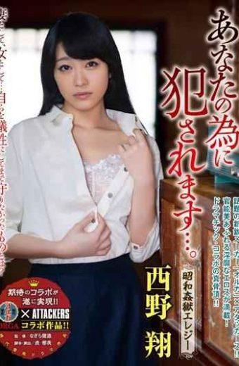 SSPD-111 I Fucked For You …. Showa Elegy Tonight Sho Nishino