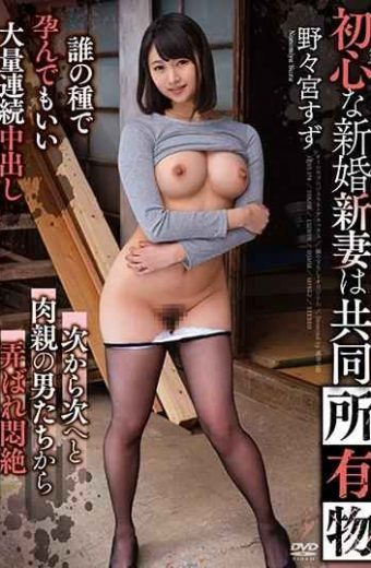 APNS-174 The Naive Newlyweds Are Newly Owned Jointly Nonomiya Tin