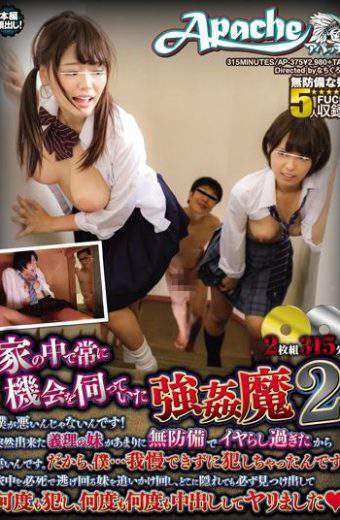 AP-375 Sister-in-law SEX Suddenly