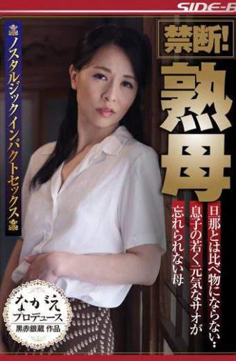 NSPS-539 Ayako Inoue Forbidden Mother