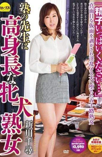 CESD-371 Shinkawa Chihiro School Teacher
