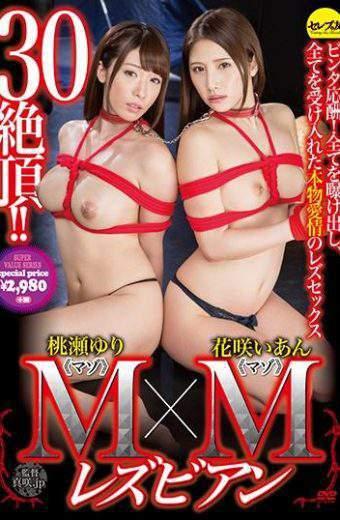 CESD-372 Momose Yuri Hanasaki Ian Lesbian