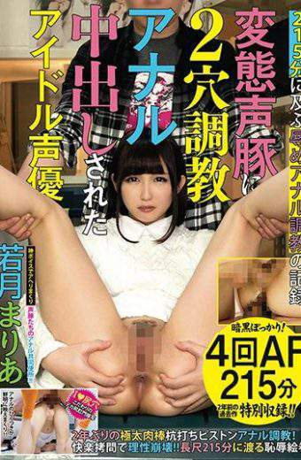 YAN-043 Idle Voice Has Been Issued Two-hole Torture In Anal Transformation Voice Pig Maria Wakatsuki