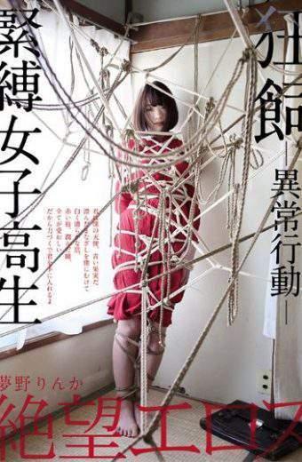ZBES-034 Yumeno Rinka Bonded Girls Student