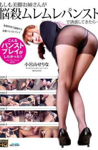 HXAG-001 Legs Her Sister Once You Have Temptation Bombshell Muremure Pantyhose Moshimo … Serina Komiyama