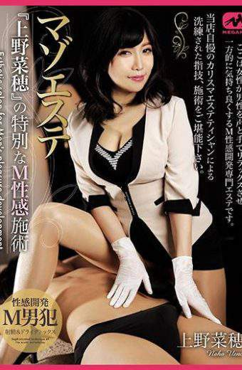 "MGMJ-021 Special M Sensibility Treatment Of Masoeste ""Nenho Ueno"""
