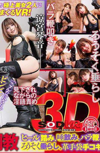 DSVR-116 VR W Slut M Men Training Heel Stepping Salivation Rose Whip Candle Drooling Leather Gloves Handjob