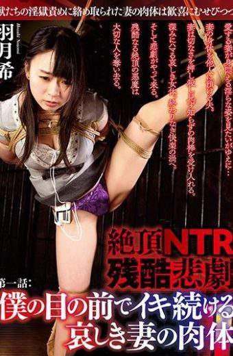 DBZC-002 Hatsuki Nozomi Cum On NTR