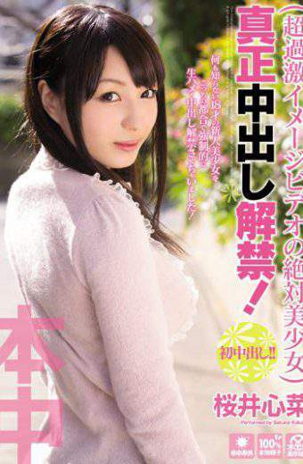 HND-113 The Lifting Of The Ban Out Beautiful Girl In Absolute Authenticity Of Cum Video Image! Sakurai Kokorona