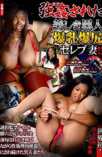 STC-007 Big Beautiful Black Tits Celebrity Wife Had Been Raped! ! Confinement Rape Kidnapping!black Wives Continued To Be In The Toilet Bowl Of Processed Meat Are Screaming Rape Vagina And Ass Hole A Hole 2