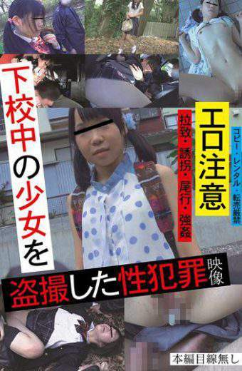 TUE-051 Sexual Offenses Video Was Voyeur The Girl In The Home From School