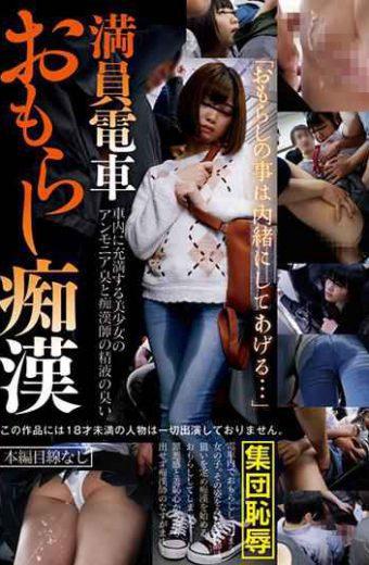 IBW-675Z Crowded Train Punishment Molester
