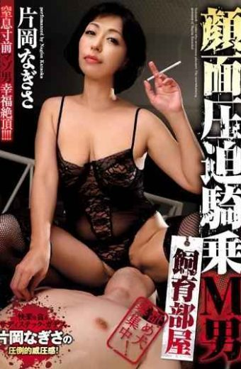 AVSA-053 Face Compression Riding M Man Breeding Room Nagisa Kataoka