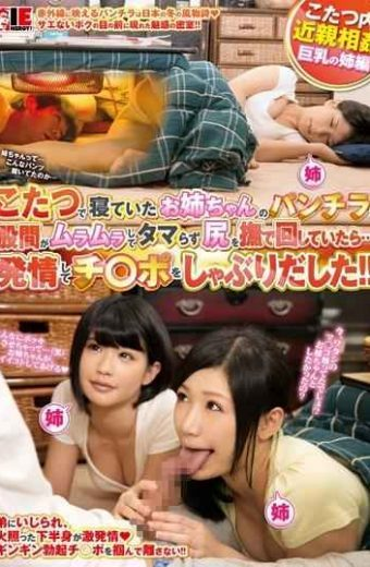 IENE-497 When I Was Turning Stroking And Tamara Zu Ass Crotch Sister Of Underwear That Has Been Is To Horny Sleeping In Kotatsu It  And Began Sucking Estrus To Switch Yes Po! !