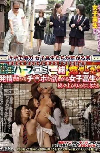 TIN-028 School Girls Covet  Ji Po And They Are Completely Estrus Once Burned Along With The Waste Aphrodisiac Herbs In The Garden Of My Home In The School Route Of School Young Lady Came Crowded Rise One After Another! !