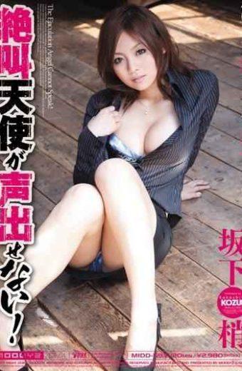 MIDD-593 Angel Voice Screams Not Afford! Kozue Sakashita